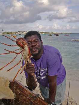 Anguilla lobster fisherman
