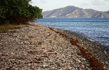 Virgin Islands Photo of the Day