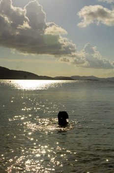 sillouette of beautiful lady bathing in the late afternoon sunshine - Francis Bay, St. John US Virgin Islands