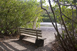 Bench overlooking the Francis Bay Salt Pond