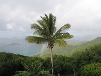 Rainy Day on St. John