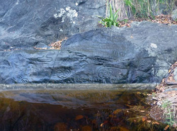 reef bay trail: petroglyphs