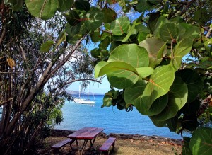 picnic table at battery, st john us virgin islands (usvi)
