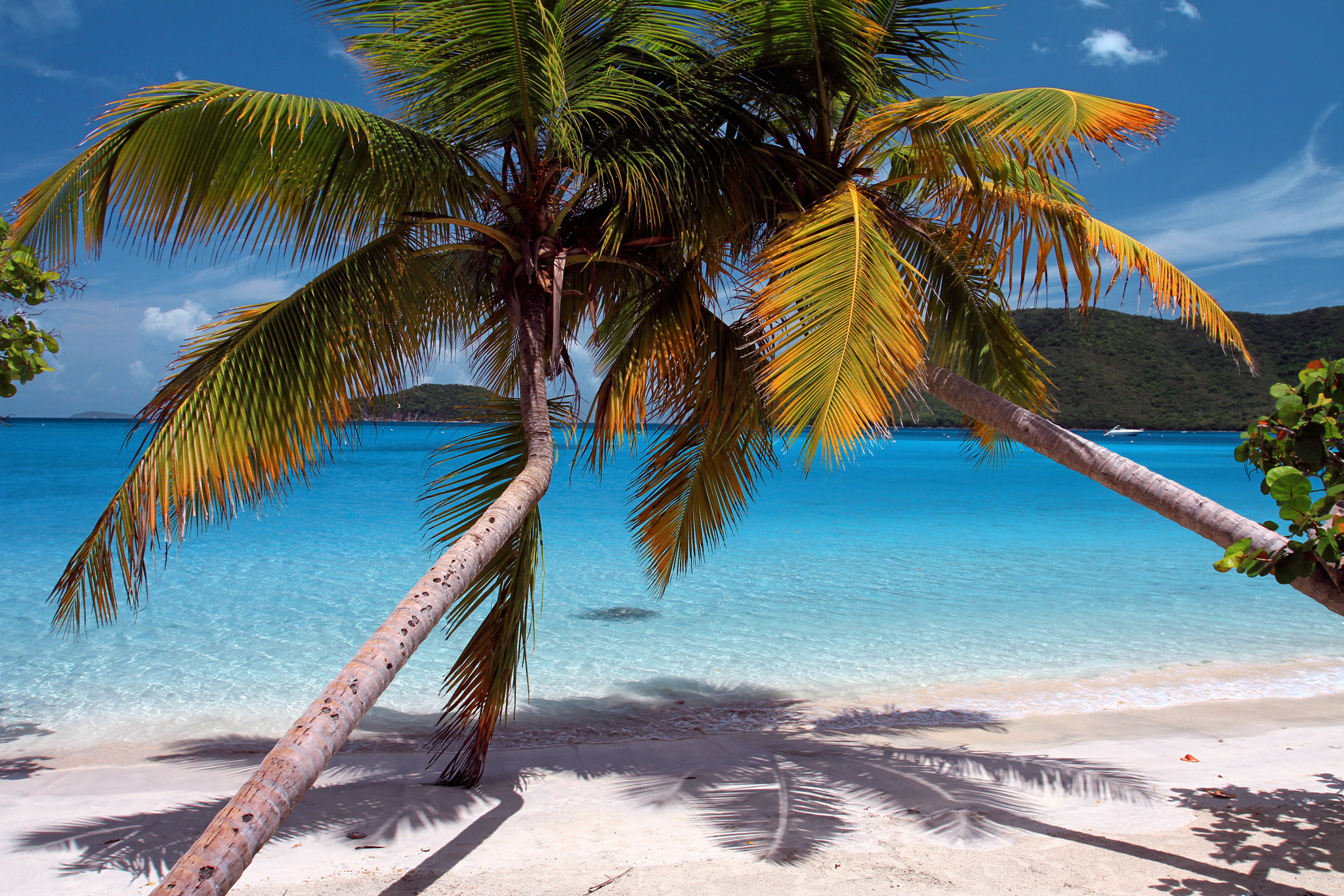 Best Beaches For Kids St John