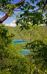 St. John Virgin Islands Trails: Maria Hope