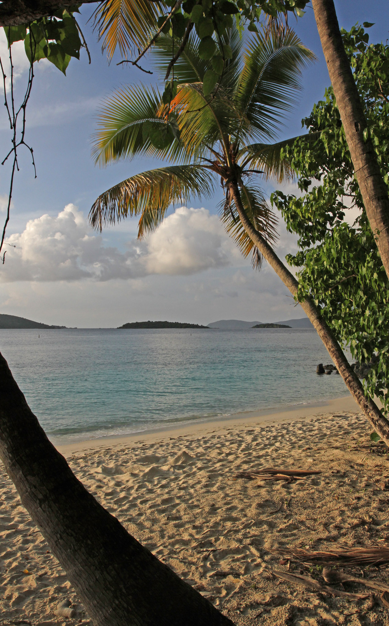 Salomon Bay