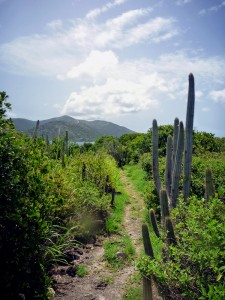 sandy cay trail, bvi