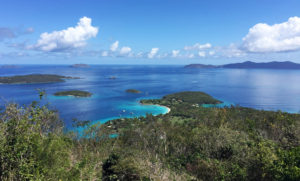 Caneel Bay View