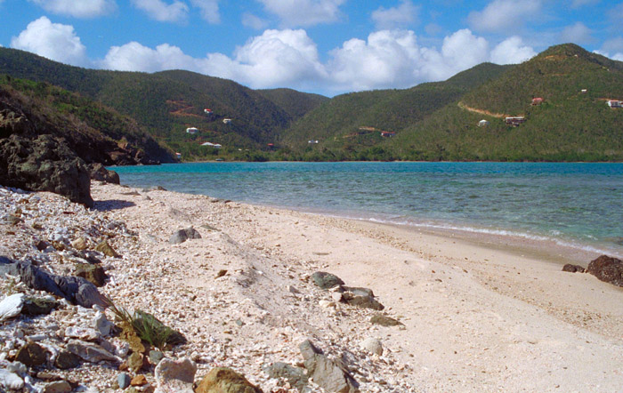 Ditleff Point Fish Bay Side Beach St John Usvi