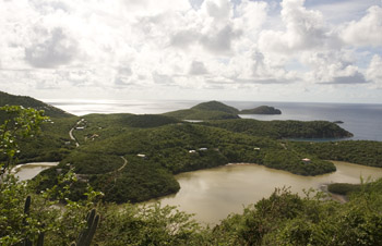 View From Tektite Trail