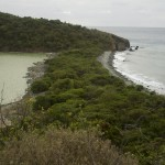 View from trail to the salt pond