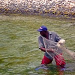 Fisherman casts Fry Net