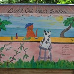 Hansen Bay bush cat snack shack
