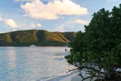 Eastern Shore Cinnamon Bay