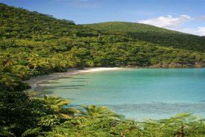 Gibney beach st