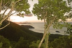 Cinnamon Bay Trail Overlook St. John