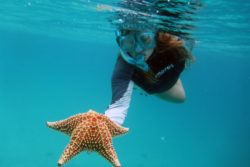 jen and starfish