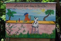 Bush cat snack shack