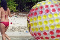Michelle beachball