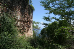 outer wall landscape
